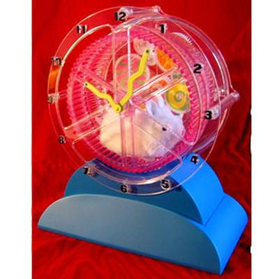 Click to get The Remarkable Hamster Clock