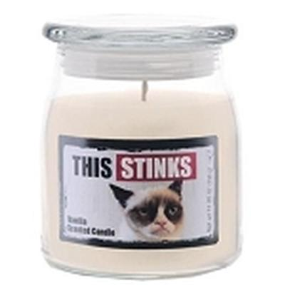 Click to get Grumpy Cat This Stinks Candle